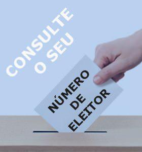 consulte-numero-eleitor-uniao-freguesias-alvito-s-pedro-s-martinho-couto